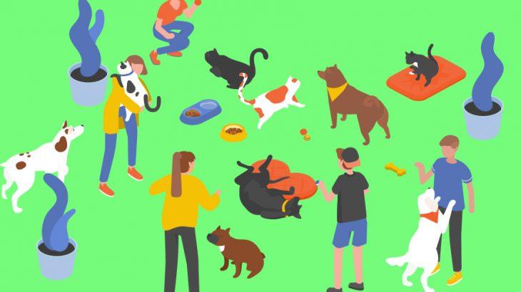 ペット業界のイメージ画像