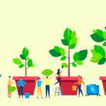 植物の成長イメージ画像