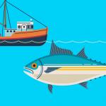 マグロの動向をブロックチェーンが追跡!漁業と消費の透明化