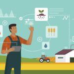 農地や農産物の権利をNFT化!地域貢献型 次世代ECサイトがリリース。
